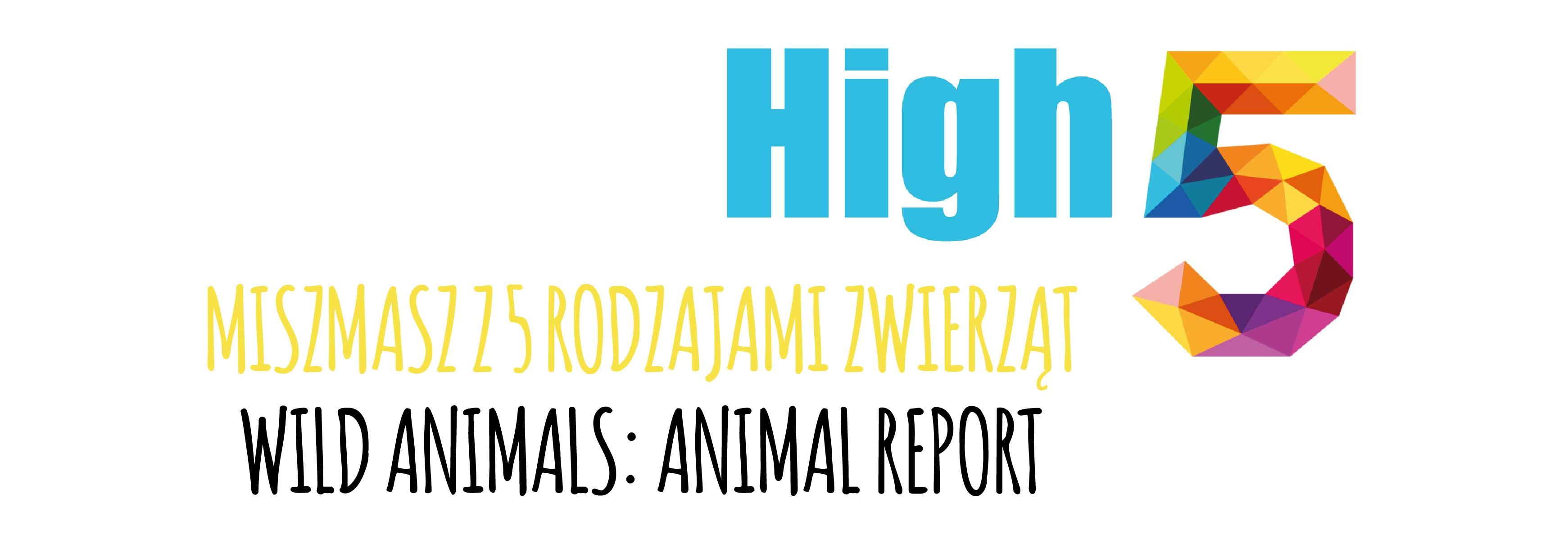 high 5 miszmasz wild-01